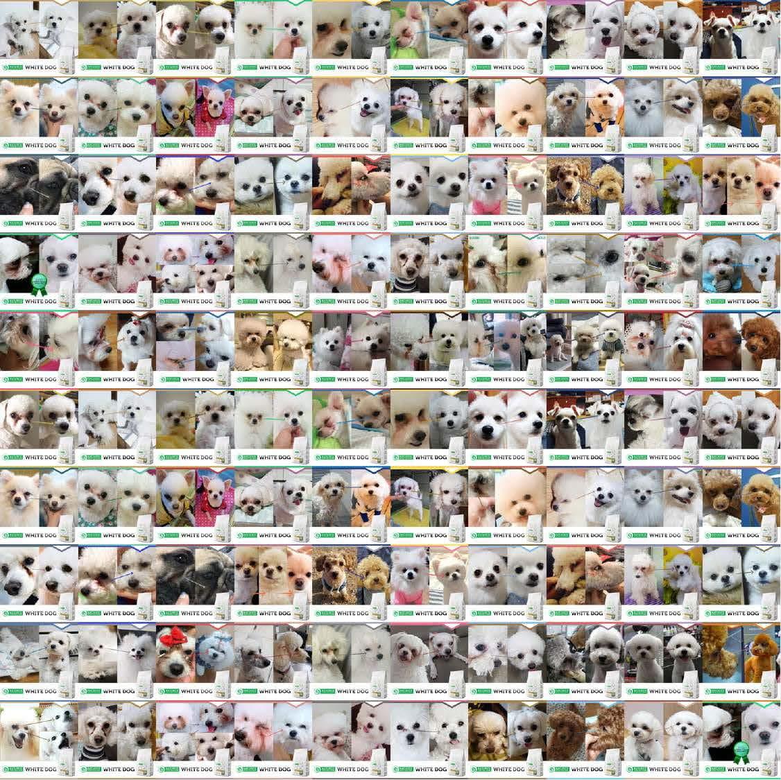 Kunden_Bilder_many